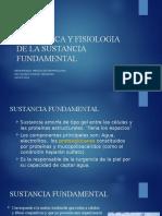 Sustancia Fundamental