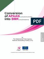 Conversion of APAAN(α-phenylacetoacetonitrile) into BMK(benzylmethylketone)