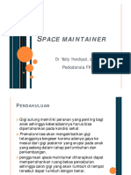 Space Maintainer