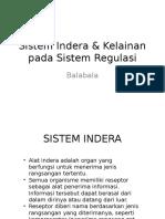 Sistem Indera & Kelainan Pada Sistem Regulasi