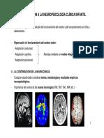 CAP 1_INTRO NEUROPSICO CLINICA INF_v2.pdf