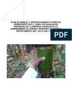 Plan de Manejo Guadua Agrocolsa
