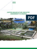 Catfish Aquaculture