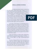 Criminal Justice System.pdf