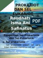 Biologi Sel Prokariot Dan Sel Eukariot Ppt