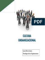cultura-organizacional-a.pdf