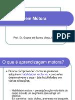 Aspectos da aprendizagem motora 3.pdf