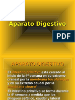 41 Aparato Digestivo (1)