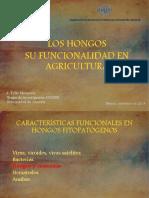 1.2 Los Hongos Su Funcionalidad en Agricultura (Tello)