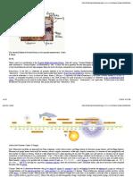 standardModelHighEnergyIntroduction_01December2014