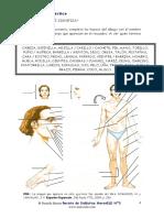 baretta-cuerpo2.pdf
