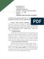Demanda Constitucional de Amparocaso Victor III - Meida Cautelar