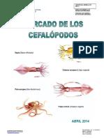 12 Informe Cefalopodos Abril 2014 Tcm7-337788