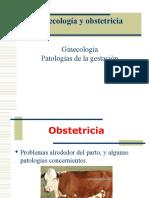 09- Patologias de La Gestación