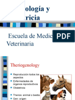 01- Ginecologia y obstetricia.ppt