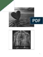 12Sangre y Sist Vascular