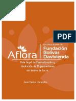 Guia de Formalizacion Fundaciones Sin Animo de Lucro