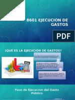 8601 Ejecucion de Gastos