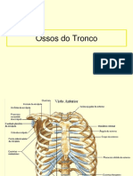 Acidentes Ósseos Do Tronco