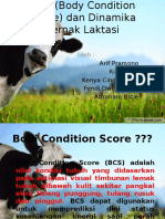 BCS (Body Condition Score) Dan Dinamika Print
