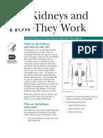 kidneys-and-kidney-disease.pdf