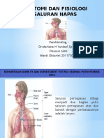 Anatomi Fix