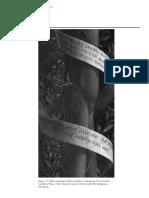 Notes on Pseudoscripts in Italian Art