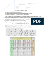 Pru Acidos Nucleicos2016
