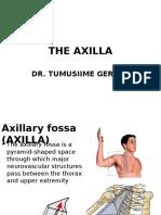 The Axilla