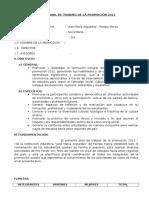 Plan Anual de Trabajo de La Promocion 2012