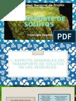 Transporte-de-solutos-II.pptx