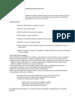 Modelo de Parámetros de Pelechano