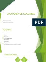 Anatomía de Columna
