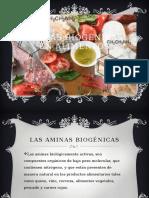Aminas-biogénicas
