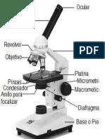 El Microscopio Fue Inventado Por Un Fabricante de Anteojos de Origen Holandés