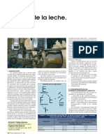 lipolisis.pdf