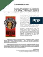 12ª aula - A consciência Negra no Brasil.pdf