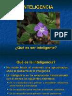 inteligencia (7).ppt