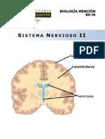 BM30-15 Sistema Nervioso II-WEB