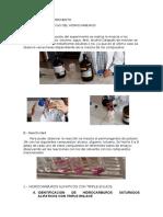 Informe Seis Organica