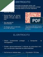 Eritrocito1.ppt