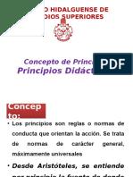 PRINCIPIOS DIDACTICOS[1]
