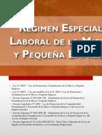 Regime Especial Del Régimen Especial de Las Micro y Pequeñas Empresas