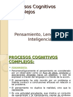 Procesoscomplejos 100603185354 Phpapp02 (1)
