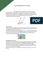 263327469-COMPOSICION-Y-DESCOMPOSICION-DE-VECTORES-pdf.pdf