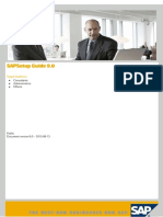 SAP Setup Guide.pdf