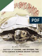 burmese brown tortoise.pdf