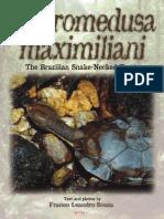 Brazilian Snake-Necked Turtle