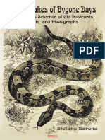 Giant Snakes of Bygone Days.pdf