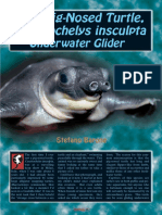 Pig-Nosed Turtle.pdf